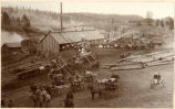 W.W. McAlpine's sawmill near Catskill, New Mexico