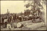 Employees of the Zuni Mountain Lumber and Trade Company sawmill, New Mexico